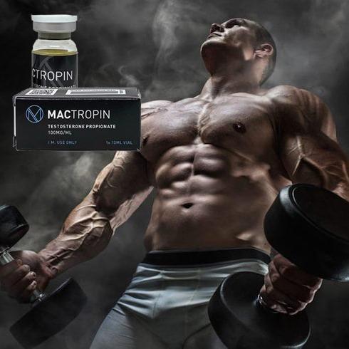 Testosterone-Propionate-_mactropinshop